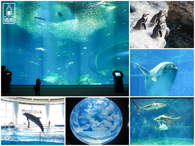 AQUA WORLD 大洗水族館