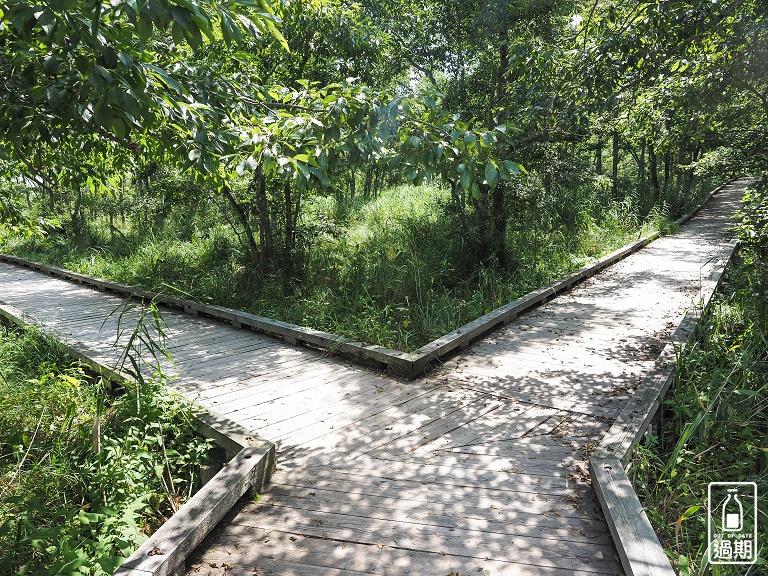 溫根內濕原步道