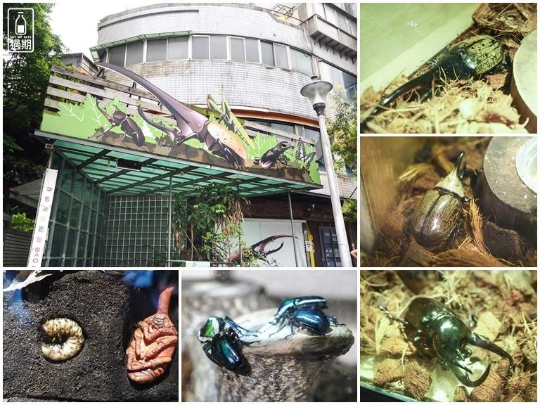 台灣昆蟲館