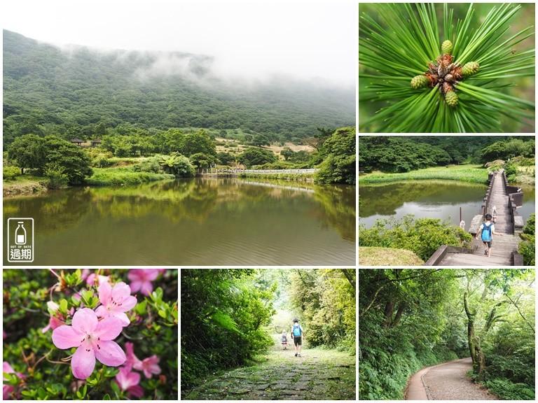 大屯自然公園-二子坪蝴蝶步道