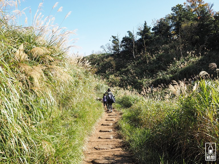 山毛櫸國家步道