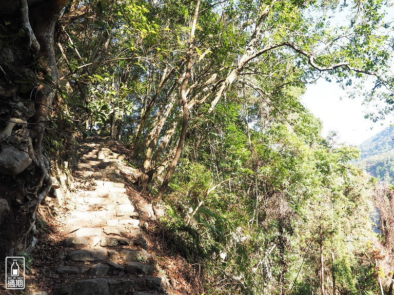 八仙山國家森林遊樂區